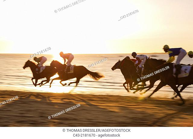 Shortly before sunset at the famous horse races of Sanlúcar de Barrameda which take place every year during August along a 1
