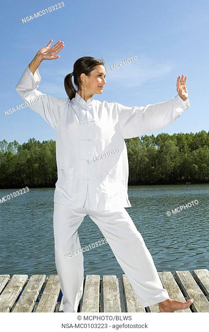 Tai Chi, grasp birds tail