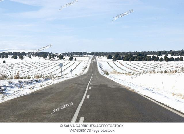 Road of Aragon with snow, Spain