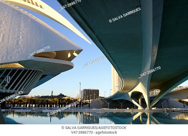 Bridge of Monteolivete (Pont de les Arts) and Opera House Rina Sofia, the City of arts and sciences, Valencia, Spain