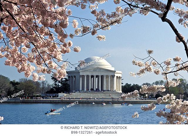 Jefferson Memorial  during the spring cherry blossom fetival