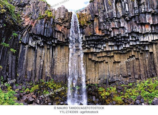 A man standing back, Svartifoss Waterfall, Iceland