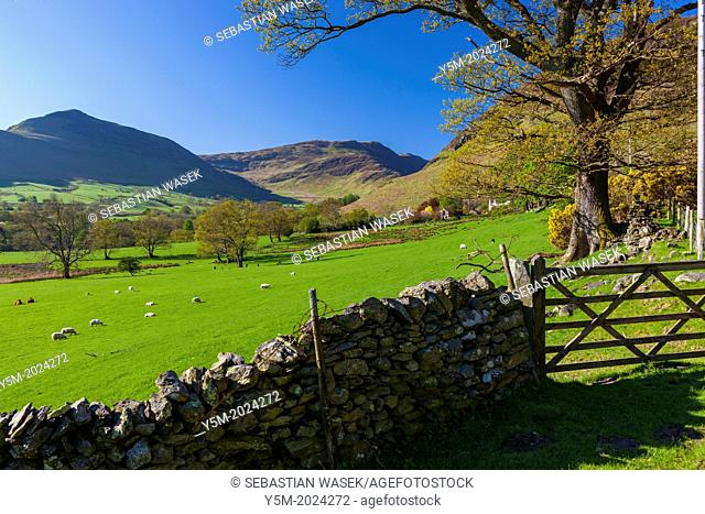 Keskedale Valley, Lake District National Park, Cumbria, England, UK, Europe