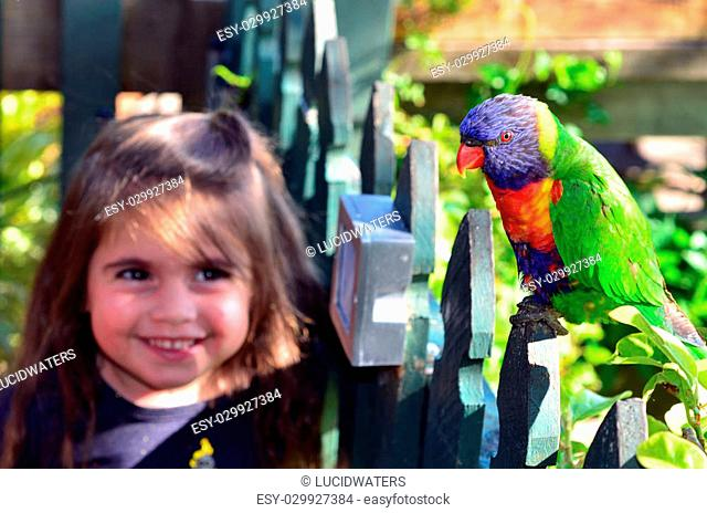 Happy little child (girl age 04) smile and looks at Native Australian Rainbow Lorikeet sit on a wooden fence