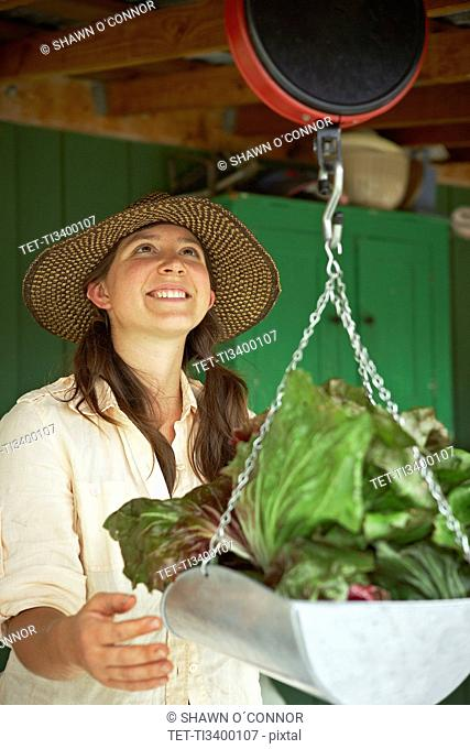 Young woman weighing cabbages
