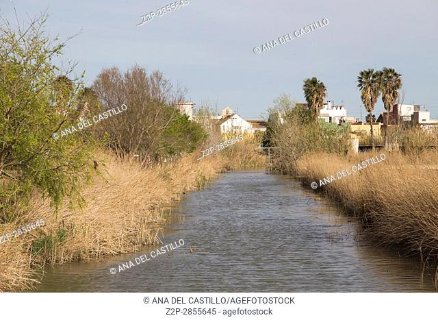 La Albufera lake nature reserve, El Palmar, Valencia, Comunidad Valencia on March 8, 2017