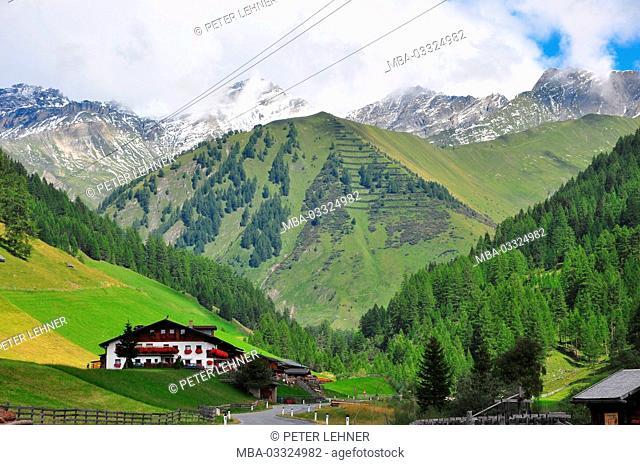 Austria, Tyrol, Schmirntal, to Toldern, vegetation zones, Olperer