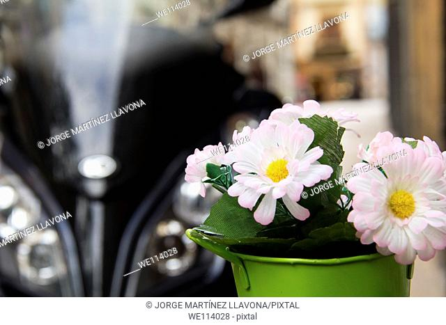 Flowers on a pot beside a motorbike