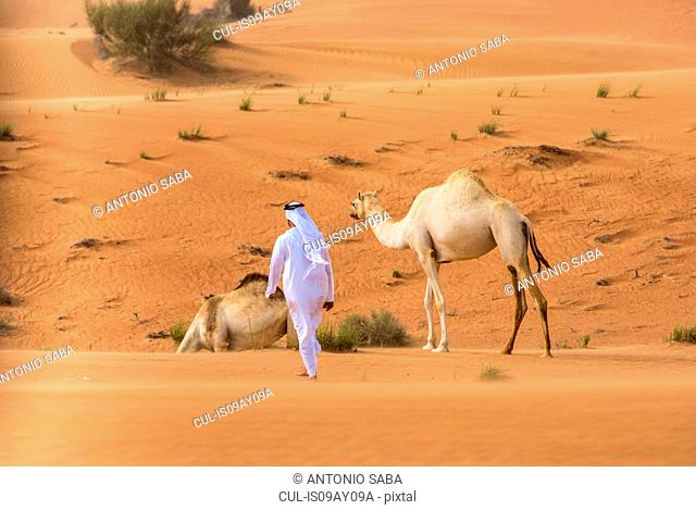 Middle eastern man wearing traditional clothes walking toward camels in desert, Dubai, United Arab Emirates