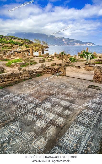 Algeria, Tipazza City, Roman ruins of Tipazza City, mosaic