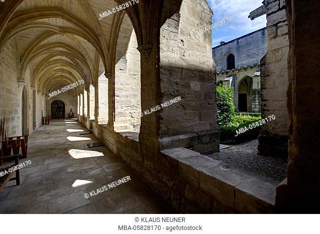 chartreuse Val de Bénédiction, cloister, cloister, Villeneuve lès Avignon, Département Gard, region of Languedoc-Roussillon, France