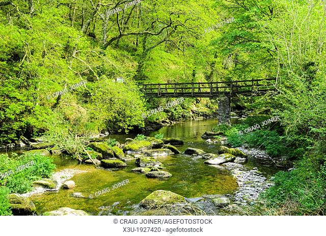 Footbridge over The East Lyn River in Barton Wood in Exmoor during spring near Lynmouth, Devon, England
