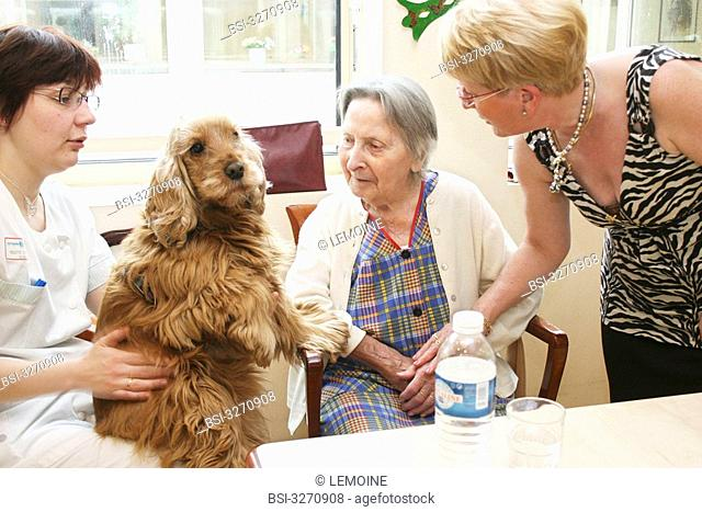 Photo essay in a Housing Institution for Dependent Elderly Persons. Animation with a dog. Nurse and coordinator
