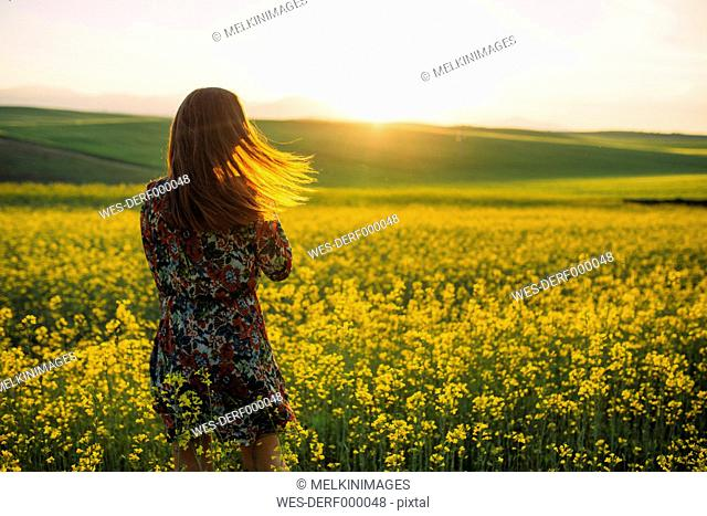 Back view of young woman standing in a rape field at twilight