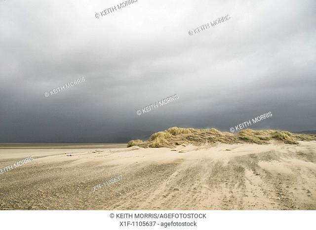 Wind blowing sand , Ynyslas Nature Reserve, Borth, Ceredigion, Wales, UK