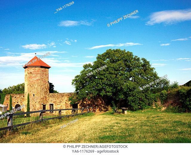Castle Battenberg