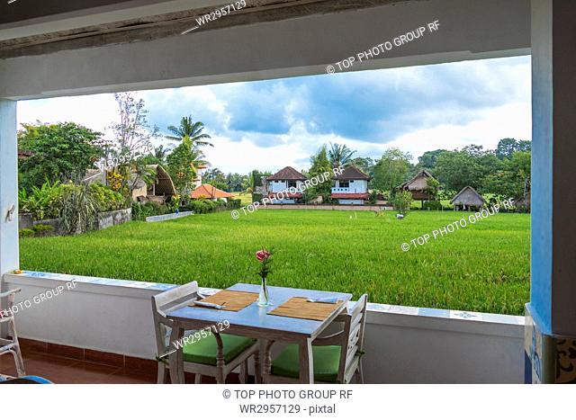 Landscape Field Seeing from Window, Ubud, Bali, Indonesia
