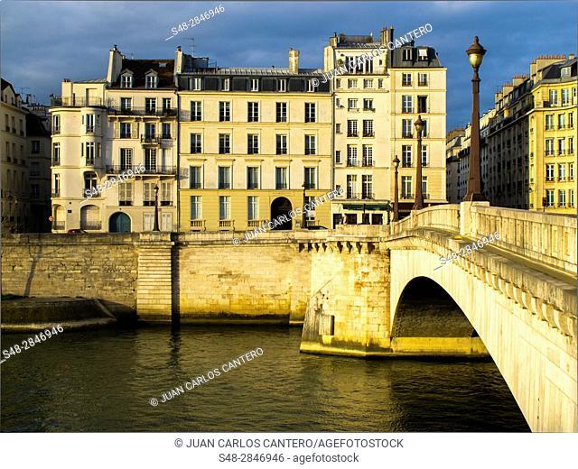 Puente sobre el rio Sena en Paris. Francia. Europa