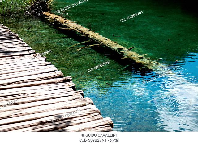 Rustic wooden bridge and fallen tree at Plitvice Lakes National Park, Croatia