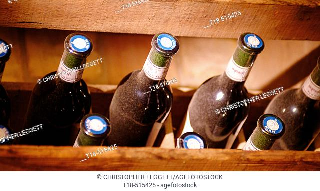 Dusty wine bottles in crate, France