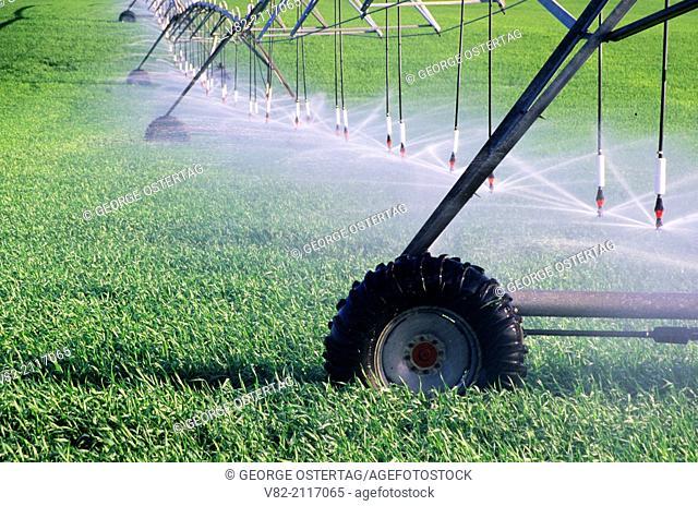 Irrigation equipment, Grant County, Washington