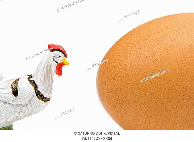fake chicken and real egg