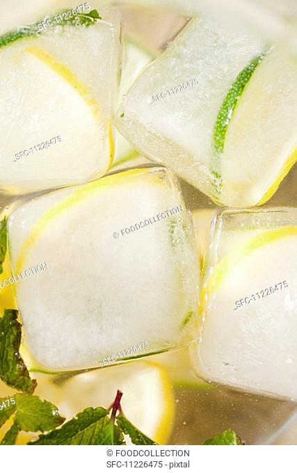 Close up of Lemon and Lime slices frozen into ice cubes