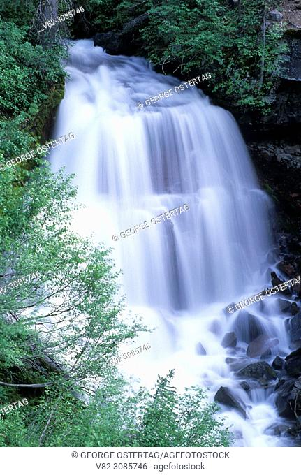 Middle Squaw Creek Falls, Three Sisters Wilderness, Deschutes National Forest, Oregon