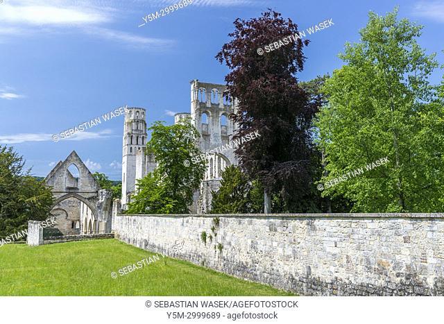 Jumièges Abbey ruins, Seine-Maritime, Normandie, France, Europe