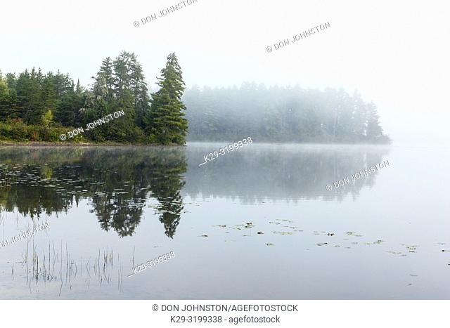 Lake Traverse at dawn in late summer, Algonquin Provincial Park, Nipissing Township, Ontario, Canada