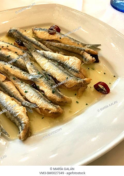 Fried anchovies serving. Spain