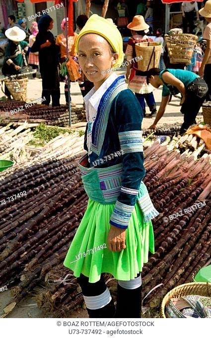 A Hmong  Miao  woman wearing a traditional dress