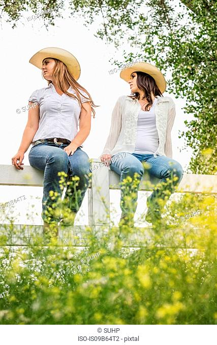 Young adult sisters in cowboy hats sitting on ranch fence looking back, Bridger, Montana, USA
