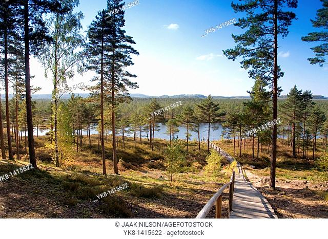 Meenikunno Landscape Reserve in Estonia, Europe