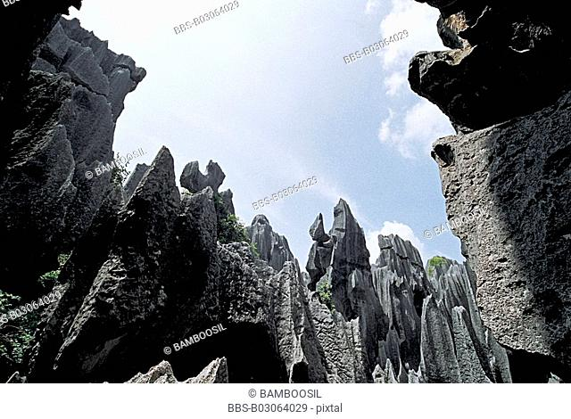 Stone Forest, Shiling County, Kunming City, Yunnan Province, People's Republic of China