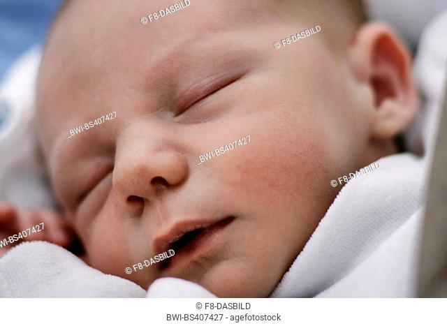 sleeping new baby, portrait of a child