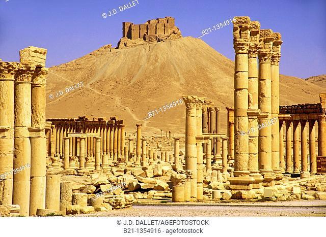 Columns and the Arab Castle, Palmyra, Syria