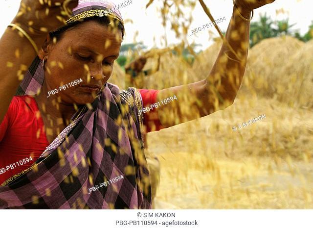 Woman sifting grains Narsingdi, Bangladesh May 2008