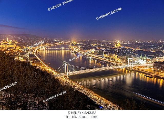 Waterfront cityscape with illuminated Elisabeth Bridge