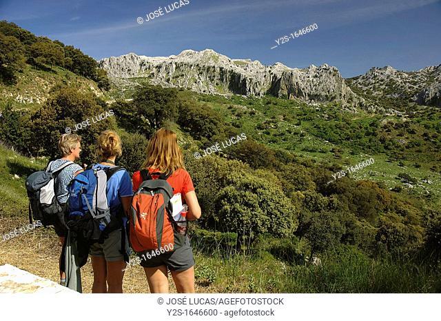 Natural Park of Sierra de Grazalema, Hikers, Cadiz-province, Spain