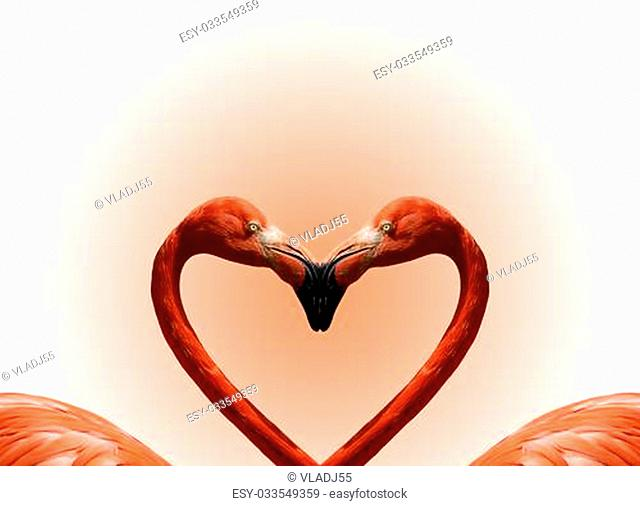 Postcard Valentine's Day with pink flamingos on the background of the heart
