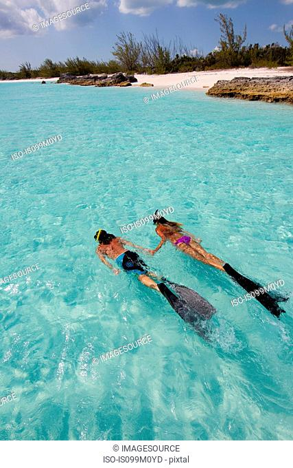 Snorkeling in the Atlantic Ocean