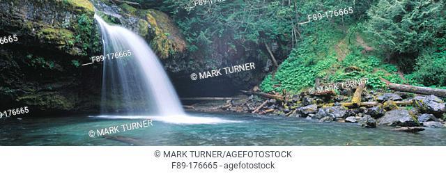 Iron Creek Falls. Gifford Pinchot National Forest. Washington. USA