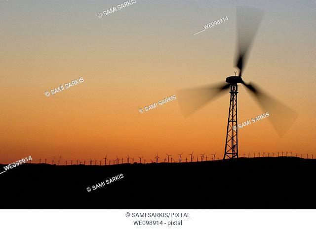 Wind turbine on a ridge at sunset, Tarifa, Andalusia, Spain
