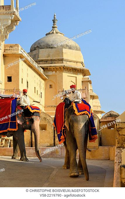 India, Rajasthan, Amber Fort, Elephants and mahouts
