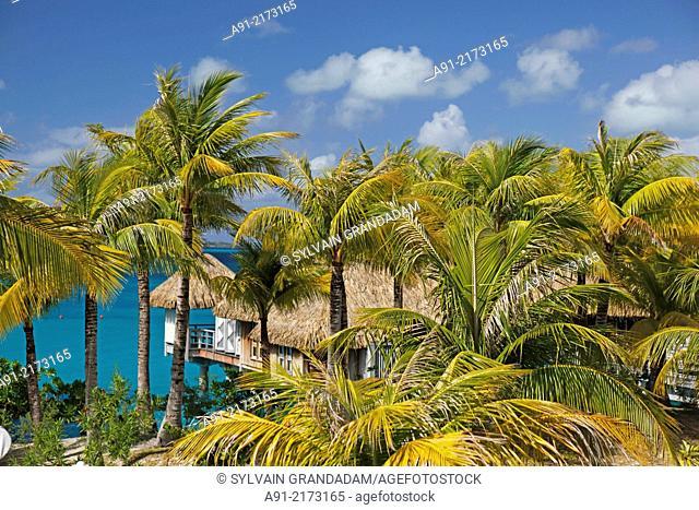 French Polynesia, Windward islands archipelago, bora bora island, Saint Regis luxury hotel and resort