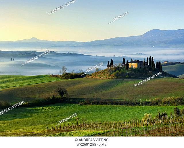 Morning fog at sunrise in the Val d'Orcia near San Quirico d'Orcia, Province Siena, Tuscany, Italy