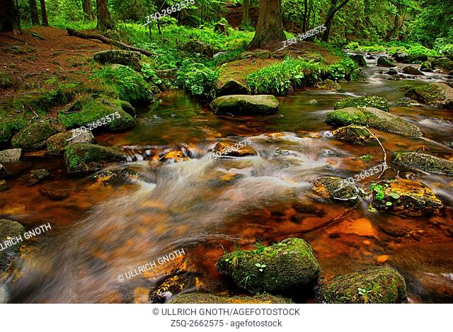 The Bode river, here near the town of Schierke in the Harz Mountains, Saxony-Anhalt, Germany