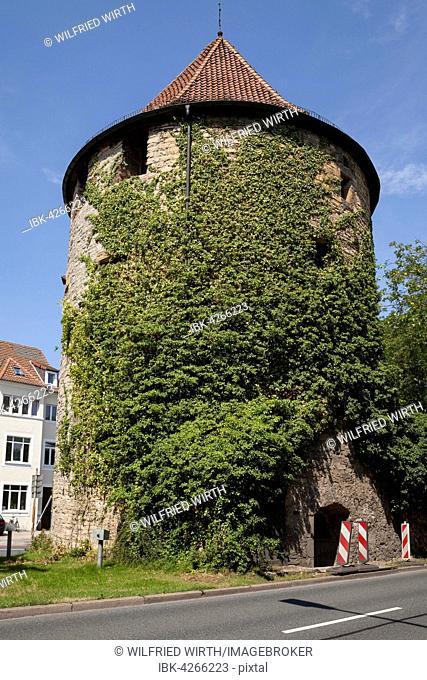 Bucksturm, fortified defence tower, Osnabrück, Lower Saxony, Deutschlnad