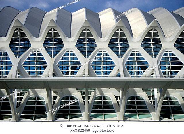 Science museum, City of arts and science, Valencia, Comunidad valenciana, Spain